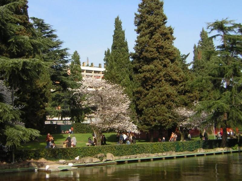 EUR SpA - Parco Centrale del Lago (Roma Eur)
